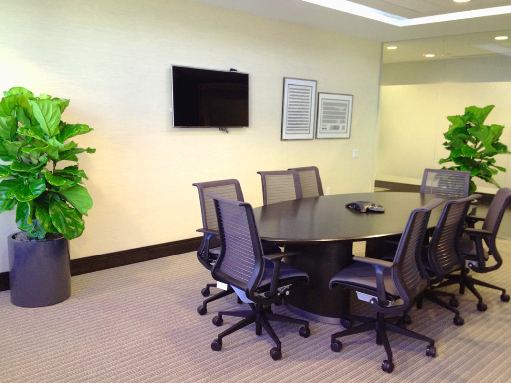 Office Plants Plants Leasing Commercial Landscaping