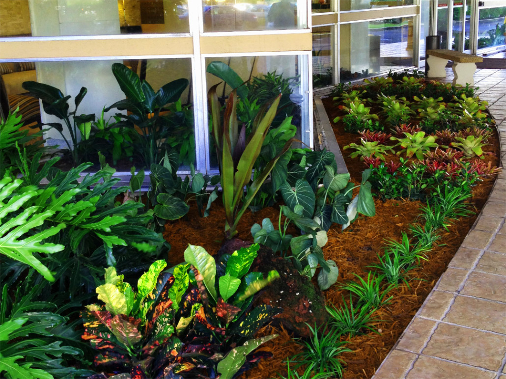 Exterior Landscaping: Office Plants, Plants Leasing, Commercial Landscaping