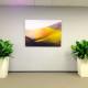 Indoor-Landscape-Designa